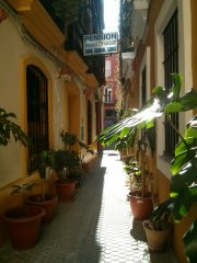 casa hostal pension virgen de la luz sevilla
