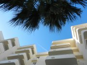 hotel_complex_hotel_palm_trees_1401788840.jpg