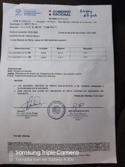muestra_mina_de_oro_1583905941.jpg