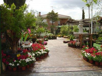 Garden vivero venta de empresas de vivero garden for Viveros madrid norte