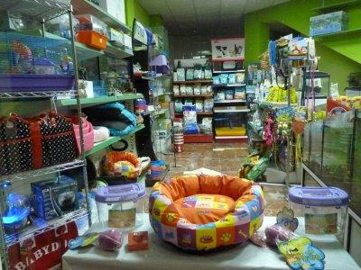 Alicante traspaso tienda animales traspaso de negocios de tienda de animales alicante - Centro de negocios en alicante ...