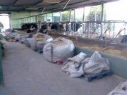 Producción y comercialización de leche fresca pasterizada