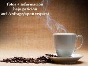 cafe_2_1486999616.jpg