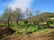 Finca Andalucia, recreo y turismo rural