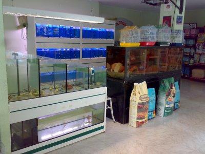 tienda de animales valencia