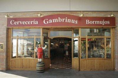 Fotos de la franquicia cervecer as gambrinus for Decoracion de cervecerias